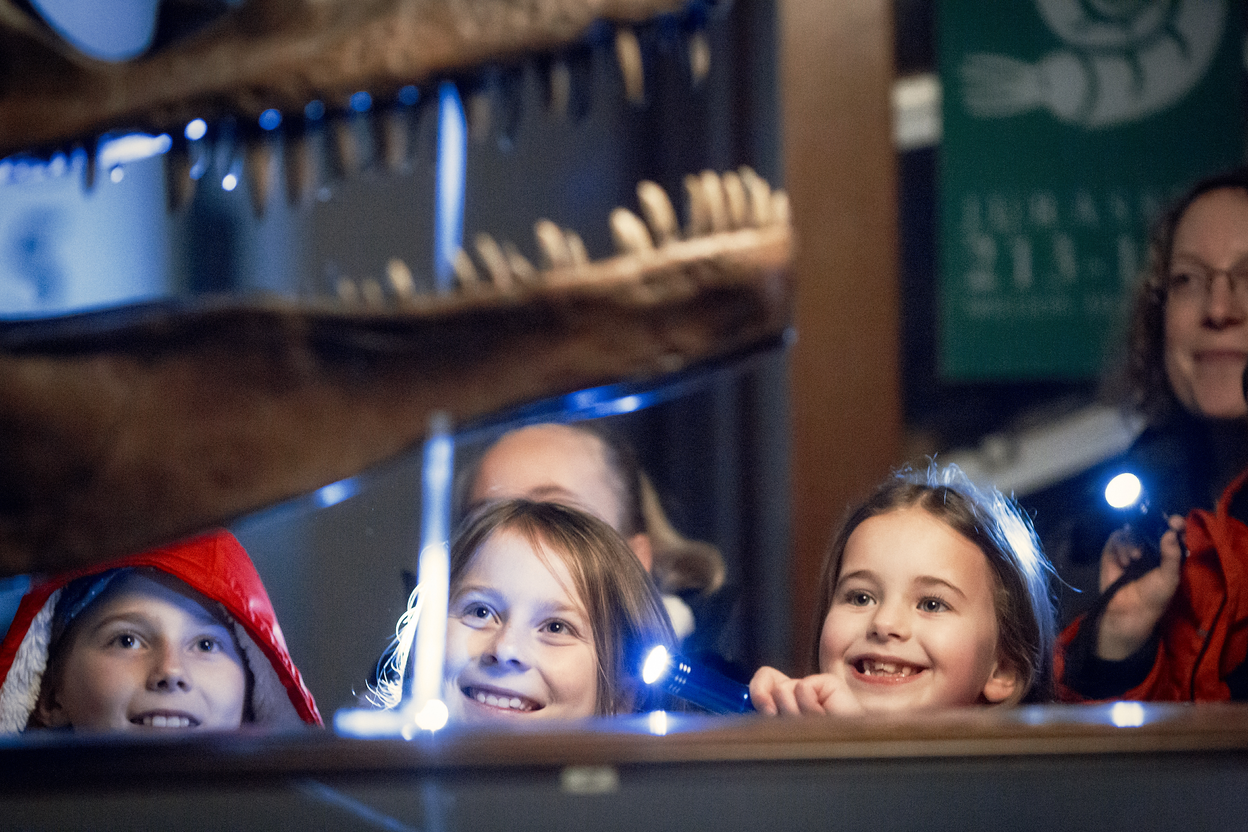 Young girls smiling as they shine torches at a dinosaur skeleton at Sedgwick Museum.