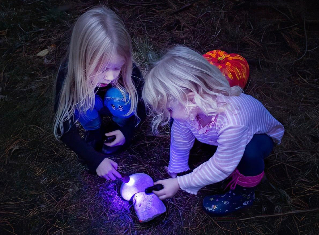 Two young girls kneeling on the ground shining torches on two rocks on the ground.